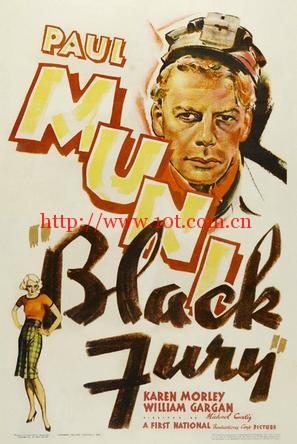 复仇女神 Black Fury (1935)