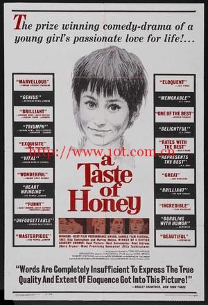 蜜的滋味 A Taste of Honey (1961)