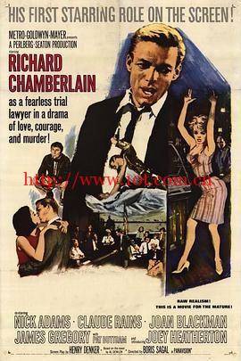 荣誉曙光 Twilight of Honor (1963)