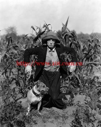 稻草人 The Scarecrow (1920)