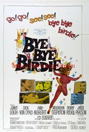 欢乐今宵 Bye Bye Birdie (1963)