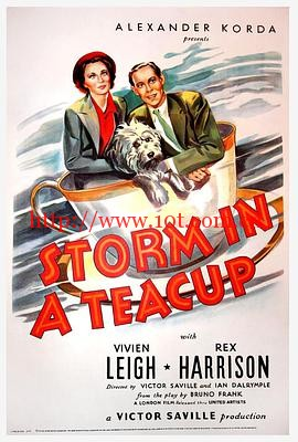 茶杯里的风暴 Storm in a Teacup (1937)