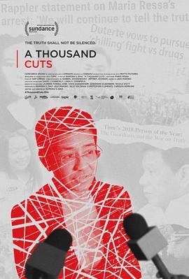 千审万查 A Thousand Cuts (2020)-WEB-1080P