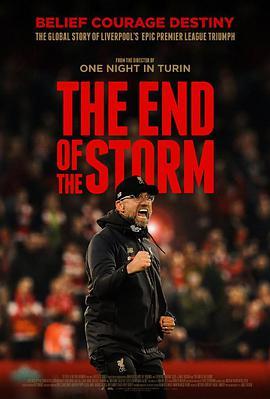 风暴尽头 The End of the Storm (2020)-WEB-1080P